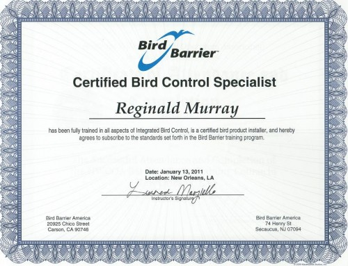 Bird Barrier Oklahoma Wildlife Control Certified Installer